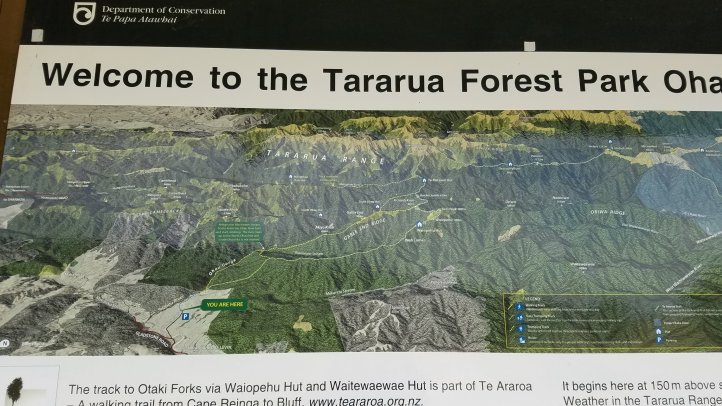 TA Day 61- The Epic Tararuas – classickiwicourtz